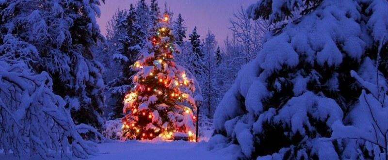 joyful-season